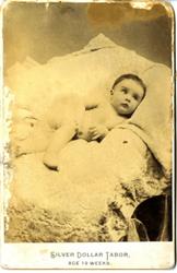 photograph--Photograph Case--card
